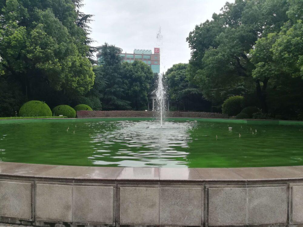 敷地内の花園の写真